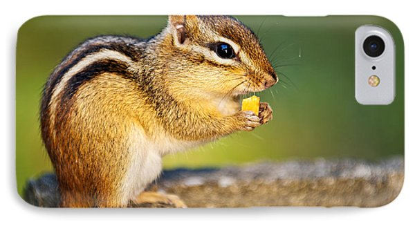 Wild Chipmunk  IPhone Case