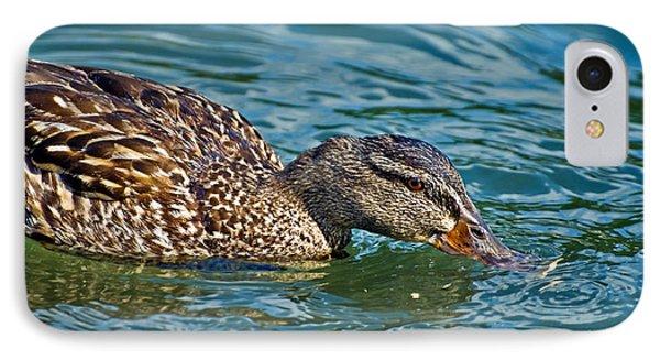 Wild Duck Phone Case by Susan Leggett