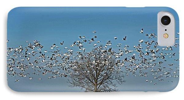 Wild Geese IIi Phone Case by Debbie Portwood