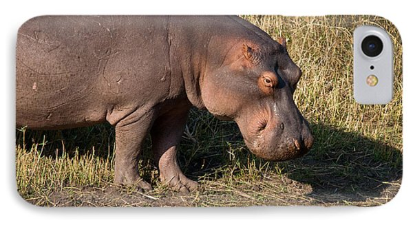 IPhone Case featuring the photograph Wild Hippopotamus by Karen Lee Ensley