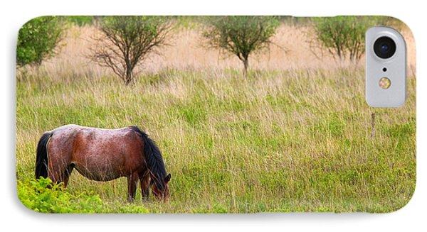 Wild Horse Grazing Phone Case by Richard Thomas