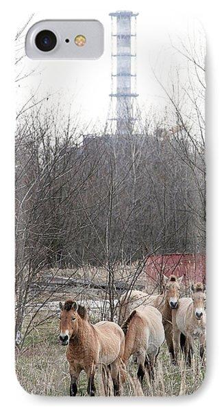 Wild Horses Near Chernobyl Phone Case by Ria Novosti