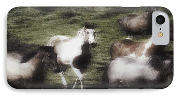 Wild Horses On The Move Phone Case by Don Hammond