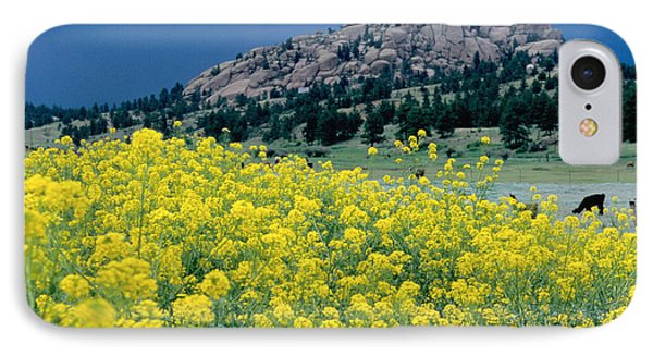 Wild Mustard Phone Case by James Steinberg and Photo Researchers