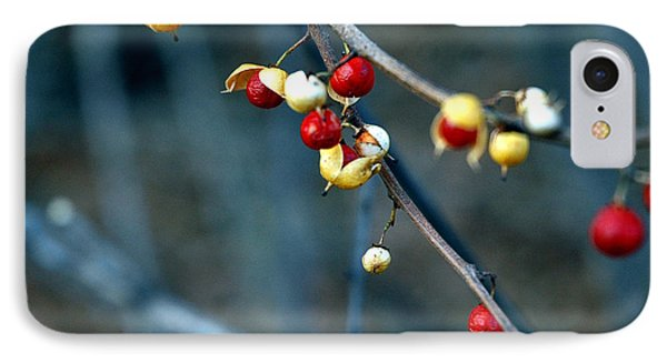Wild Red Berries Out Of The Shell Phone Case by LeeAnn McLaneGoetz McLaneGoetzStudioLLCcom