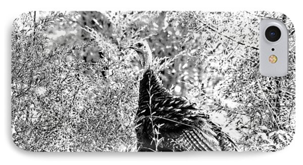 IPhone Case featuring the photograph Wild Turkey In Black And White by Maciek Froncisz