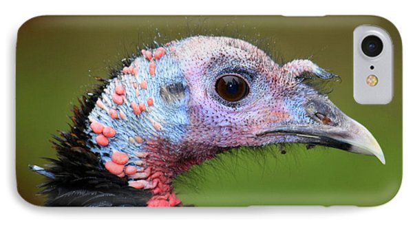 IPhone Case featuring the photograph Wild Turkey by Patrick Witz