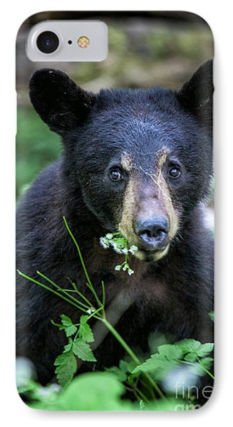 Wildflower Bear IPhone Case by Ronald Lutz