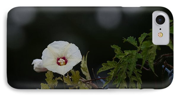 IPhone Case featuring the photograph Wildflower On Fence by Ed Gleichman