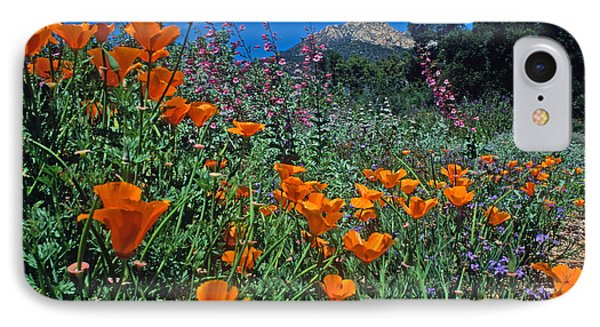 Wildflower Wonderland Phone Case by Kathy Yates