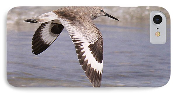 Willet In Flight IPhone Case by Roena King