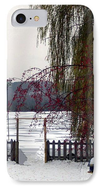 Willows And Berries In Winter IPhone Case