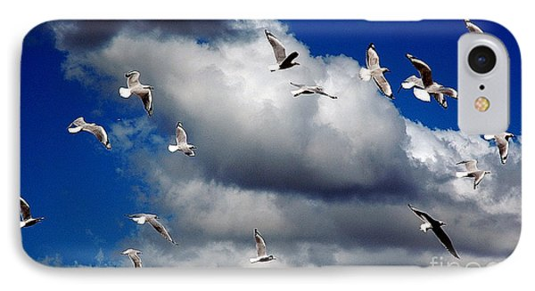IPhone Case featuring the photograph Wind Sailing Seagulls by Vicki Ferrari