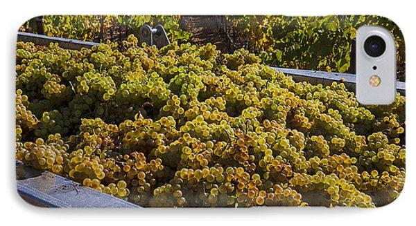Wine Harvest Phone Case by Garry Gay