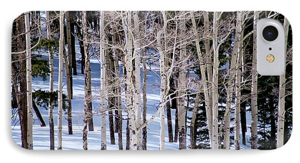 IPhone Case featuring the photograph Winter Aspens by Colleen Coccia