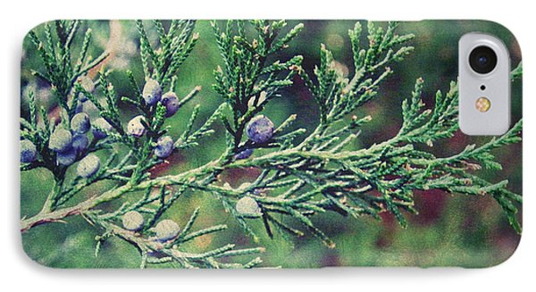 IPhone Case featuring the photograph Winter Berries by Robin Dickinson