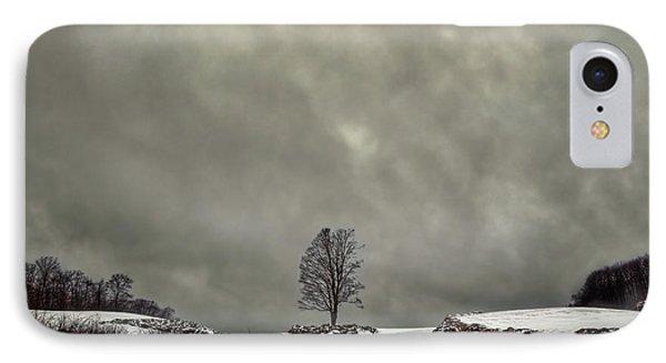 Winter Blues Phone Case by Evelina Kremsdorf