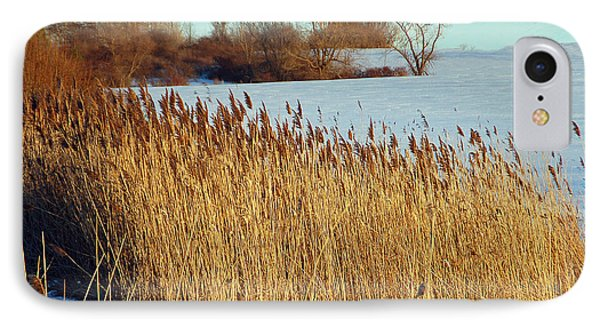 Winter Breeze Phone Case by Aimee L Maher Photography and Art Visit ALMGallerydotcom
