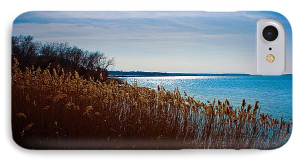 Winter Breeze Phone Case by Lisa Holmgreen