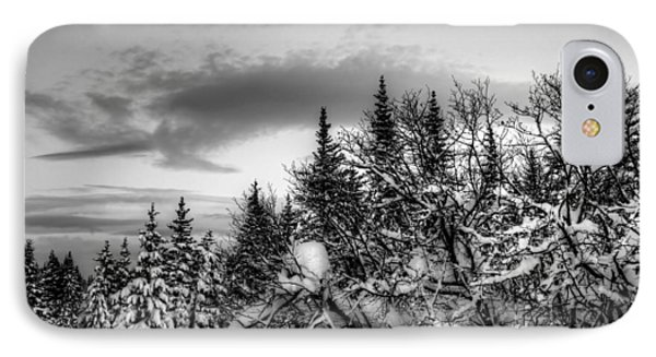 Winter Evening IPhone Case by Michele Cornelius