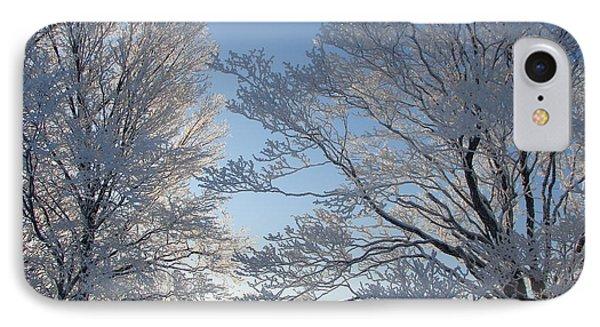 Winter Ice IPhone Case