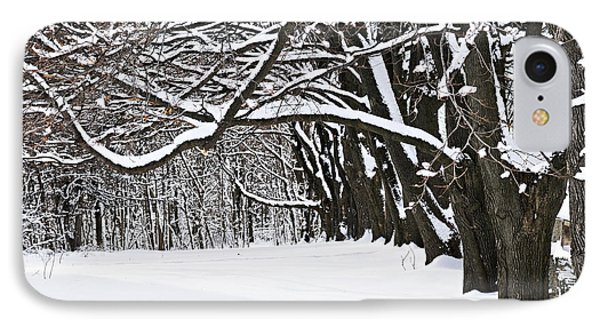 Winter Park With Snow Covered Trees Phone Case by Elena Elisseeva