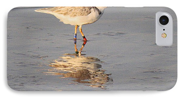 Winter Piping Plover Banded 2 Phone Case by Roena King