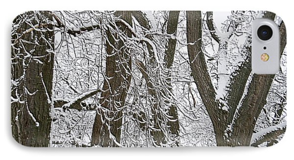 Winter Trees  Phone Case by Aimee L Maher Photography and Art Visit ALMGallerydotcom