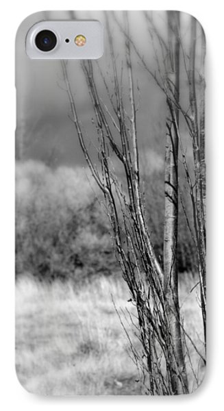 IPhone Case featuring the photograph Winters Branch by Kathleen Grace