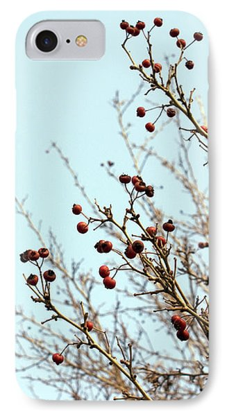 Winter's End IPhone Case by Cindy Garber Iverson