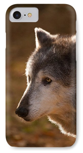 Wolf Outlined By The Sun Phone Case by Karol Livote