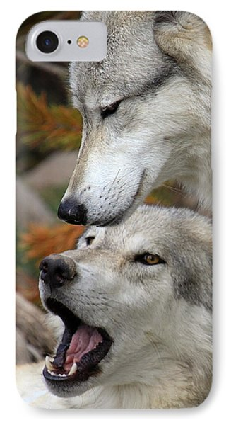 IPhone Case featuring the photograph Wolf Talk by Steve McKinzie