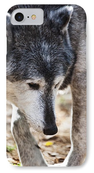 Wolfs Beauty Phone Case by Karol Livote