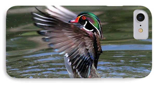 Wood Duck Stretch IPhone Case by Paul Marto