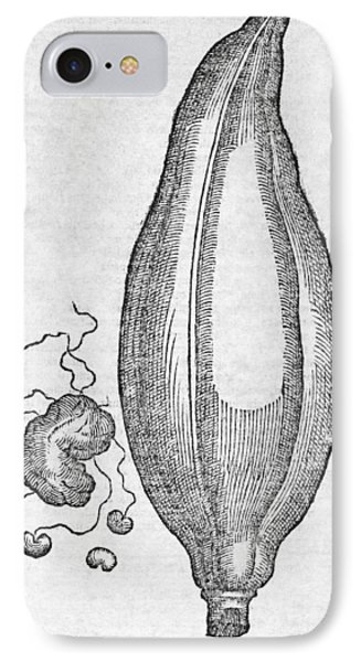Woodcut Of A Soursop Fruit IPhone Case by Middle Temple Library