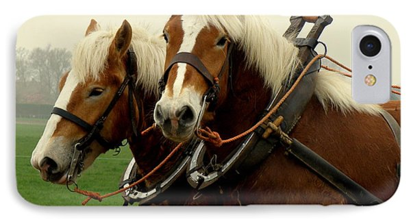 Work Horses IPhone Case by Lainie Wrightson