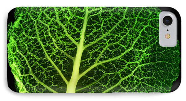 X-ray Of Cabbage Leaf Phone Case by Ted Kinsman