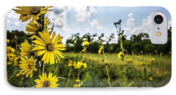 Yellow As The Sun Phone Case by CJ Schmit