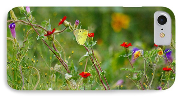 IPhone Case featuring the photograph Yellow Butterfly In Meadow by John  Kolenberg
