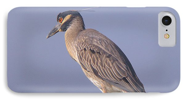 IPhone Case featuring the photograph Yellow Crowned Night Heron by Brian Wright