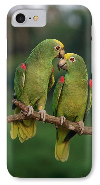 Yellow-crowned Parrot Amazona Phone Case by Thomas Marent