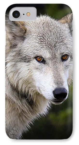 Yellow Eyes IPhone Case by Steve McKinzie