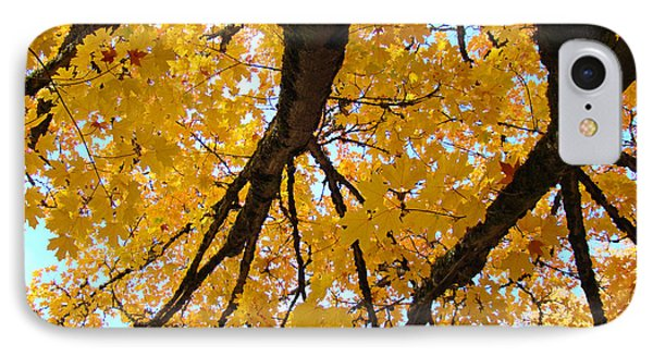 Yellow Fall Trees Prints Autumn Leaves Phone Case by Baslee Troutman