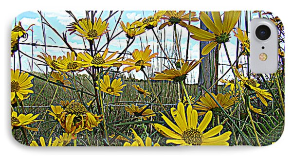 IPhone Case featuring the photograph Yellow Flowers By The Roadside by Alice Gipson