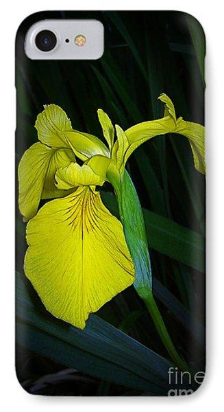 Yellow Iris Phone Case by Judi Bagwell