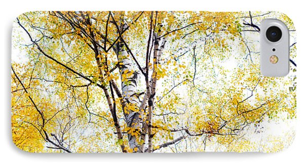 Yellow Lace Of The Birch Foliage  Phone Case by Jenny Rainbow