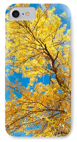 Yellow On Blue Phone Case by Bob and Nancy Kendrick