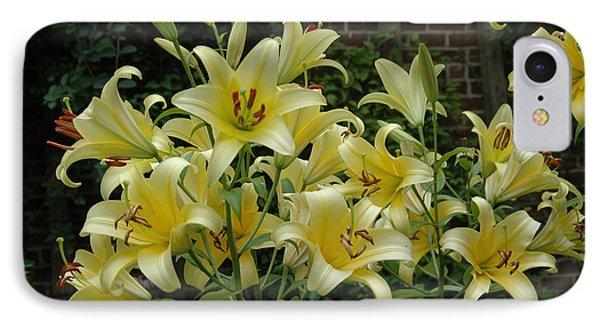 Yellow Oriental Stargazer Lilies IPhone Case by Tom Wurl