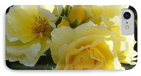IPhone Case featuring the photograph Yellow Rose by Jim Sauchyn