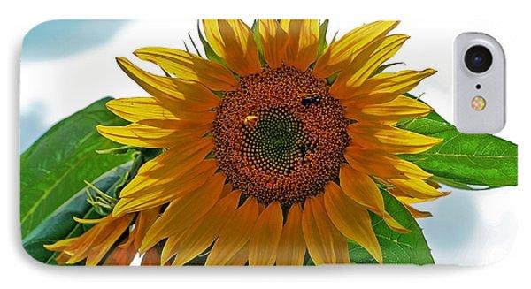 Yellow Sunflower Phone Case by Susan Leggett